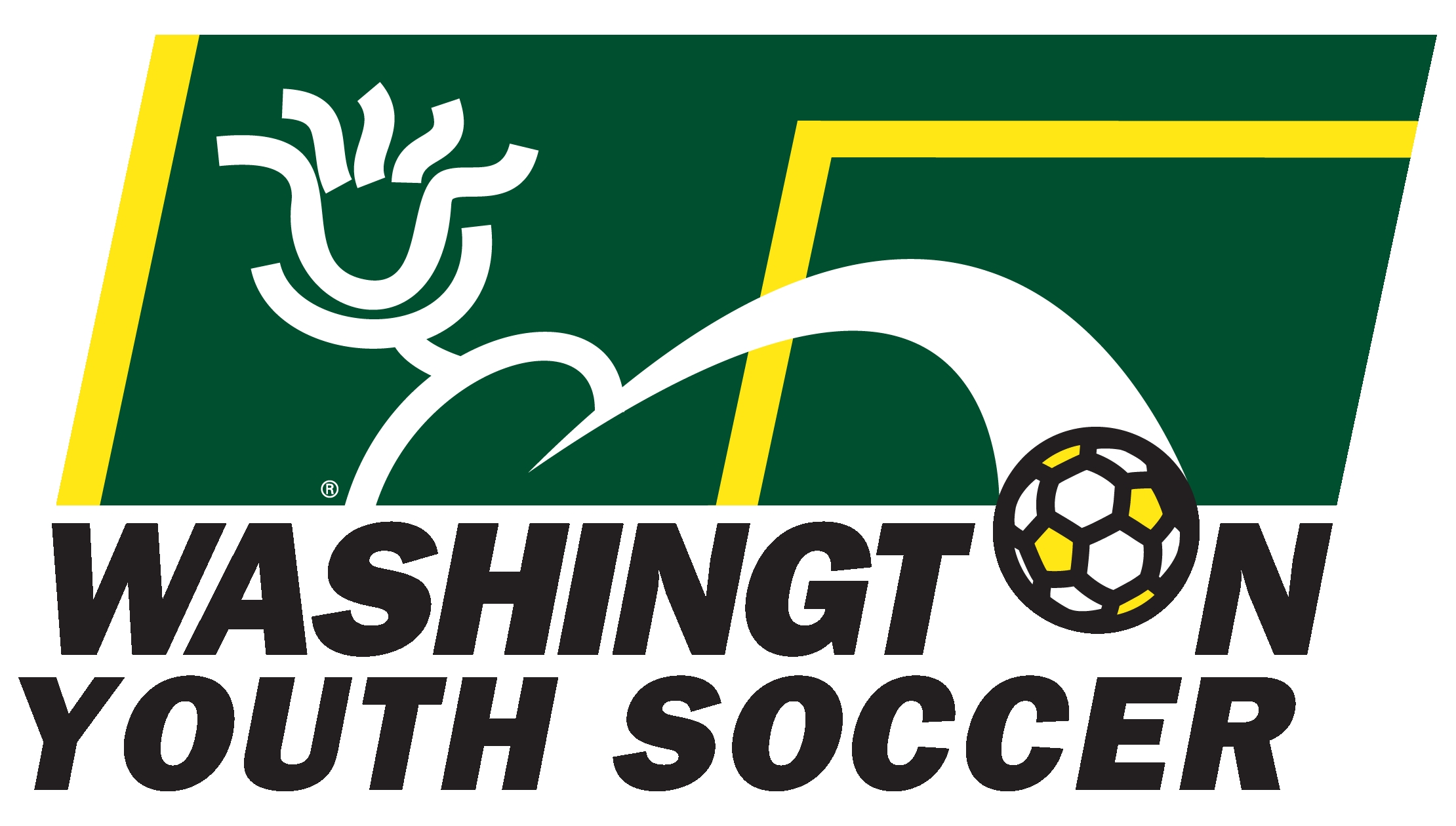 Image result for washington youth soccer